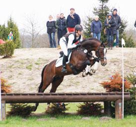 Zweite Qualifikation fürs Bundeschampionat: Gentleman siegt mit Wertnote 8.9 in einer Geländepferdeprüfung Kl.A**.